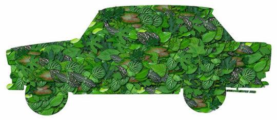 transport écologiques